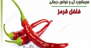 مصرف پودر فلفل قرمز تازه در درمان سرماخوردگی