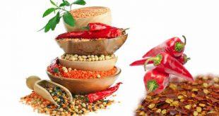 خرید و فروش انواع بذر فلفل قرمز