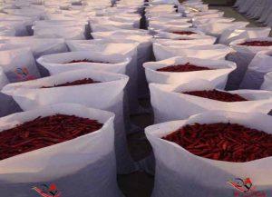 قیمت فلفل قرمز صادراتی