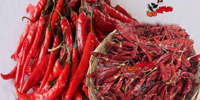 خرید و قیمت فلفل قرمز تازه و خشک