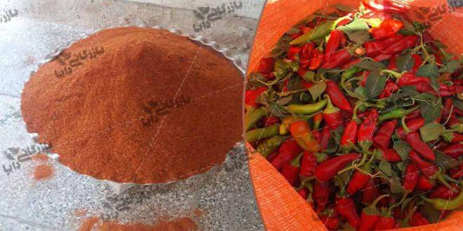 قیمت خرید فلفل قرمز پودر شده با تندی بسیار بالا