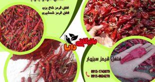 قیمت خریدهرکیلو فلفل قرمز ایرانی